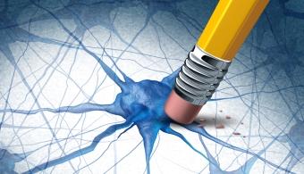 Un amplio dominio del vocabulario protege del deterioro cognitivo