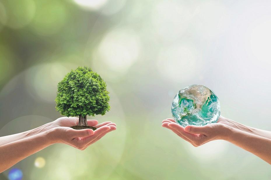 5 trucos para reducir la huella de carbono