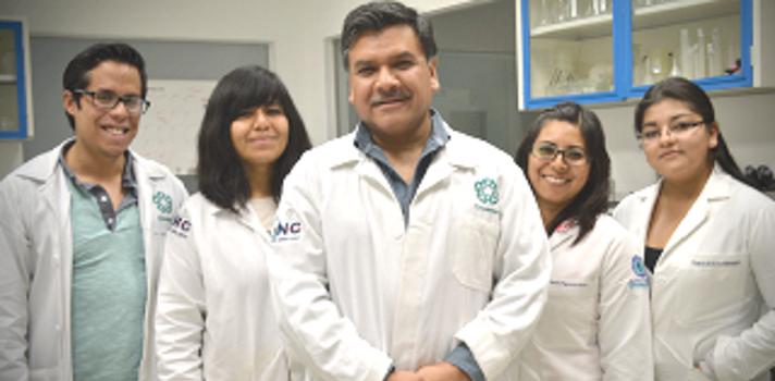 """<p style=text-align: justify;>Este hallazgo reportado recientemente en la revista Frontiers –la publicación más importante de neurología– con el título """"The relationship between truncation and phosphorylation at the C-terminus of tau protein in the paired helical filaments of Alzheimer's disease"""", podría contribuir a descubrir qué detona la enfermedad de Alzheimer y otras demencias, indicó Luna Muñoz.</p><p style=text-align: justify;></p><p style=text-align: justify;><strong>El cerebro, una red compleja</strong></p><p style=text-align: justify;>El especialista indicó que la proteína tau se encarga de mantener de manera óptima el citoesqueleto presente en los axones de las neuronas, que es la """"red"""" que permite que estas se conecten entre sí.</p><p style=text-align: justify;>Explicó que cuando se desarrolla Alzheimer o alguna otra demencia, la proteína tau se altera y genera cambios como la hiperfosforilación y truncación, que generan la muerte de la neurona: """"En esta enfermedad se ha evidenciado la acción de enzimas proteolíticas (que favorecen la degradación de proteínas) en el mecanismo de apoptosis (muerte celular programada)"""".</p><p style=text-align: justify;>Detalló que estas enzimas lo que hacen es fragmentar a la proteína tau y favorecer su polimerización en filamentos altamente resistentes a la proteólisis. Estos filamentos se van acumulando en el soma de la neurona, lo cual finalmente genera la muerte celular y expone estos paquetes de filamentos en el espacio extracelular, que desconecta áreas específicas.</p><p style=text-align: justify;>""""En la enfermedad de Alzheimer, la acumulación de estas neuronas dañadas denominadas marañas neurofibrilares se encuentra en la corteza entorrinal y en el hipocampo. La muerte de estas neuronas en estas zonas genera clínicamente los olvidos inmediatos"""", dijo.</p><p style=text-align: justify;>Resaltó que se ha visto que el evento más temprano en el procesamiento anormal de la proteína tau es la fragmentación de esta en su e"""
