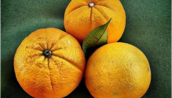 Científicos japoneses desarrollan biocombustible a partir de naranjas