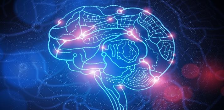 Podríamos tener hasta 33 sentidos según la neurociencia.