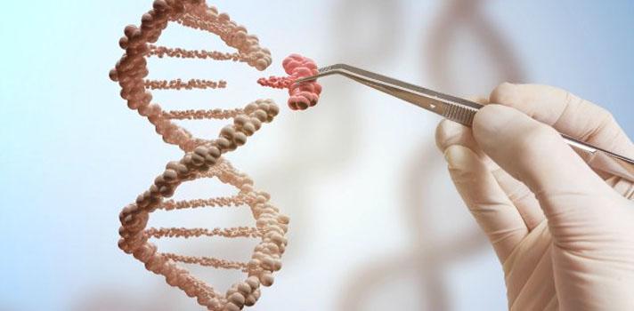 La modificación genética es una posibilidad para la que resulta necesario marcar límites éticos