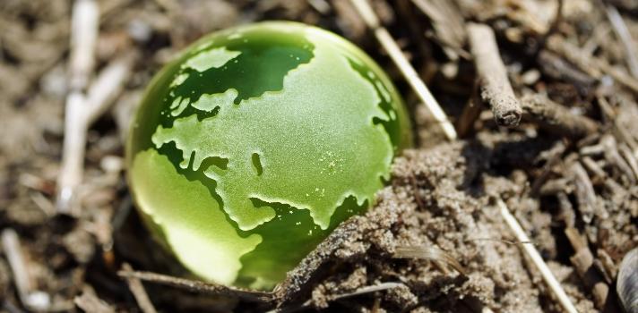 La sostenibilidad es el objetivo de muchos de los puntos propuestos por la ONU