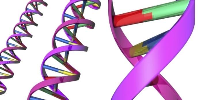 Conoce el viaje de tu ADN a lo largo de la historia