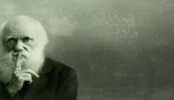 """<p style=text-align: justify;>Para conocer la obra del naturalista británico Charles Darwin ya no precisarás consultar una gran cantidad de bibliografía. La<strong><a title=Universidad inglesa de Cambridge href=https://estudios-internacionales.universia.net/uk/universidades/CAM/index.html>Universidad inglesa de Cambridge</a></strong> y el<strong><a title=Museo de Historia Natural de Nueva York href=https://www.amnh.org/ target=_blank>Museo de Historia Natural de Nueva York</a></strong>, en el marco del 155° aniversario de la publicación de """"El origen de las especies"""" (1859) realizó un proyecto, que permite acceder a más de 12.000 documentos digitalizados en alta resolución desde la página web<strong><a title=Darwin Manuscripts Project href=(https://www.amnh.org/our-research/darwin-manuscripts-project target=_blank rel=me nofollow>Darwin Manuscripts Project</a></strong>, que sirvieron de base para esta obra, así como a cartas escritas por el científico.</p><p></p><p><strong>Lee también</strong><br/><a style=color: #ff0000; text-decoration: none; title=Ingebook: una biblioteca online para todos href=https://noticias.universia.com.ar/en-portada/noticia/2014/11/21/1115439/ingebook-biblioteca-online.html>» <strong>Ingebook: una biblioteca online para todos</strong></a><br/><a style=color: #ff0000; text-decoration: none; title=¿Ya visitaste la biblioteca virtual de la UNESCO? href=https://noticias.universia.com.ar/en-portada/noticia/2014/11/13/1114969/visitaste-biblioteca-virtual-unesco.html>» <strong>¿Ya visitaste la biblioteca virtual de la UNESCO?</strong></a></p><p></p><h4>Los documentos en detalle</h4><p style=text-align: justify;>En la página mencionada se publican imágenes en alta resolución de los manuscritos,<strong> acompañadas por una transcripción literal de su contenido y por notas</strong> para contextualizar las anotaciones.</p><p></p><p style=text-align: justify;>Entre los documentos se encuentran desde sus <strong>primeras observaciones en su viaje en el """