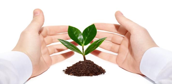 ¿Quieres vivir en un entorno sostenible? Conoce las ecoaldeas