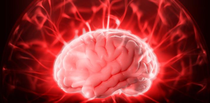 Las resonancias magnéticas no identifican zonas cerebrales sin utilizar