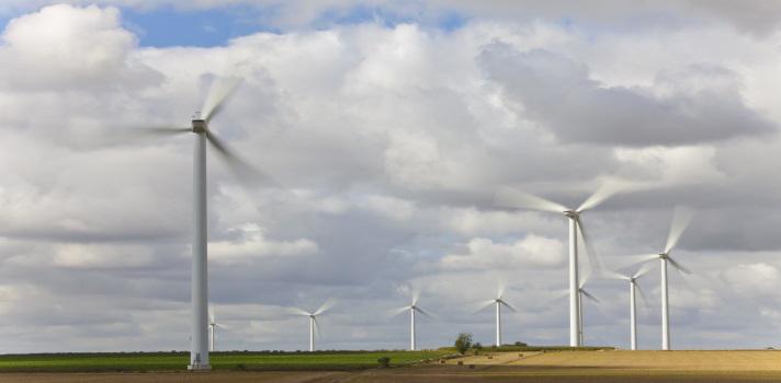 La ingeniería en medio ambiente es una de las carreras más requeeridas a nivel laboral