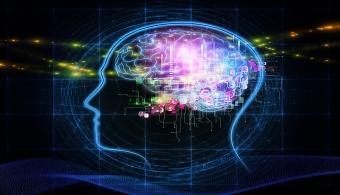 La serotonina es uno de los neurotransmisores responsable de que nos sintamos felices