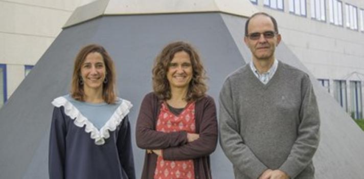 ITQB NOVA faz nova descoberta para produção de Hidrogénio enquanto fonte de energia alternativa