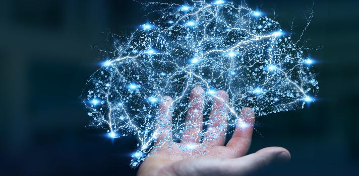 Comprender al cerebro es uno de los desafíos más importantes de la ciencia