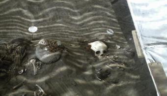 Cambio climático amenaza momias del Chinchorro
