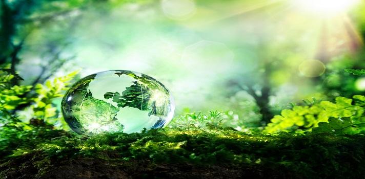 Descubre 3 proyectos innovadores de la PUCP para cuidar el medio ambiente