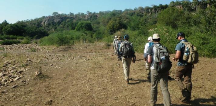 Projeto arqueológico liderado pela UAlg financiado pelo National Geographic