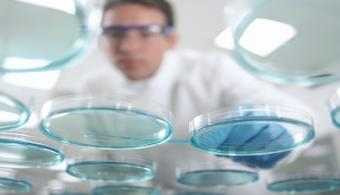 Científicos japoneses crean prueba para detectar el ébola en 30 minutos