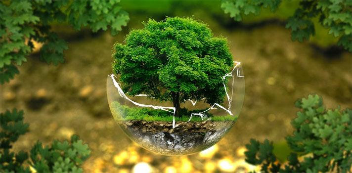 Portugal está no bom caminho no que respeita ao desafio da sustentabilidade