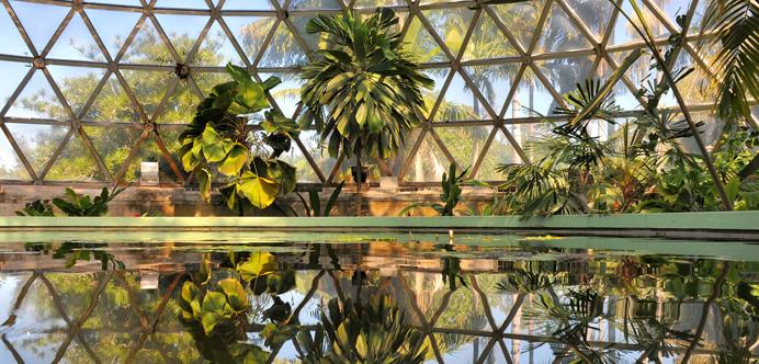 Jardines botánicos Mt Coot-tha