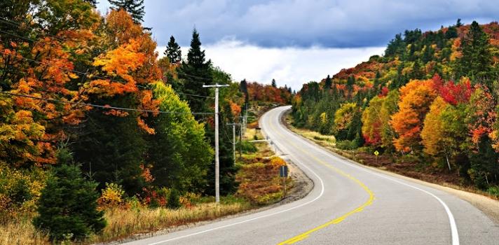 Canadá alberga unas reservas naturales que facilitan vivir en un entorno limpio y saludable