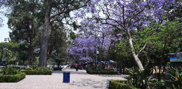 Chapultepec park en Ciudad de México