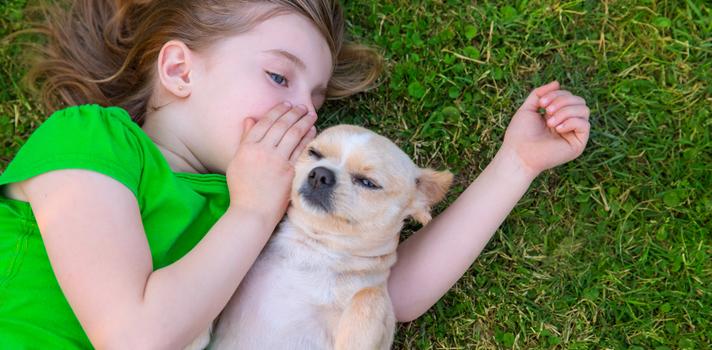 Como falar melhor em público com a ajuda do seu cão