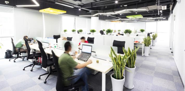 Las empresas buscan cada vez más profesionales cualificados en nuevas tecnologías