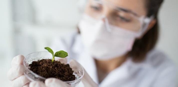 À medida que a tendência para um mundo mais verde cresce, novos empregos começam a surgir