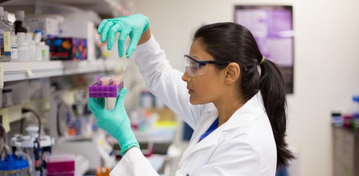 Os estudantes de Química podem fazer estágio desde o primeiro ano de curso