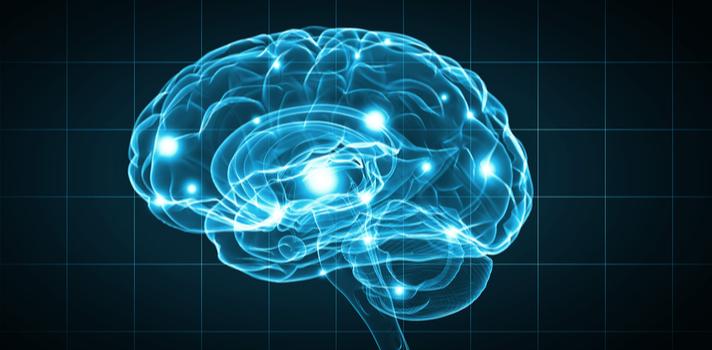 Atividades novas, jamais experimentadas, estimulam o cérebro e ajudam a criar novas conexões neurais