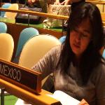 Mónica Alanis Rojas, Coordinadora de Proyectos de Coordinación Internacional