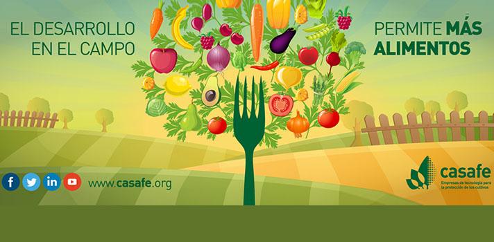 <p><span>El campo argentino es uno de los motores de nuestro país. De él provienen los alimentos de nuestra mesa y el algodón de nuestra ropa, entre otras cosas. Además, el campo equivale a miles de puestos de trabajo y es el primer eslabón de una gran cadena que nos involucra a todos. Es por esto que resulta importante cuidar los recursos con los que contamos, así como la salud de las personas y el ambiente que habitamos. Para un futuro sustentable, necesitamos cumplir las Buenas Prácticas Agrícolas.</span></p><p><span>Plantar una semilla y aguardar su fruto son solo el principio y el final. Pero en el medio existe un largo proceso que involucra mucho trabajo por parte nuestra. En el campo, se presentan <strong>adversidades </strong>que<strong> pueden atacar los cultivos y esto significaría una gran pérdida en la cosecha (hasta un 45%), que se traduce en consecuencia negativas para nuestra sociedad</strong>: disminución de alimentos disponibles, aumento en los precios, pérdidas en exportaciones, entre otras. Por eso, para no dejar caer la producción, es importante cuidar los cultivos.</span></p><p><strong><span>Las tecnologías agrícolas se han desarrollado en los últimos años y han favorecido la producción de alimentos</span></strong><span> para un mundo en constante crecimiento. Este desafío sigue vigente, ya que para alimentar al mundo en 2050, la productividad agrícola debe aumentar 1,75% cada año. No obstante, <strong>es muy importante que las prácticas en el campo cuiden la salud de las personas y sean amigables con el ambiente</strong>. El camino que debe seguir la agroindustria es el de la sustentabilidad.</span></p><p><strong><span>Buenas prácticas agrícolas</span></strong><span> es un término que hace referencia a un conjunto de principios, normas yrecomendaciones técnicas aplicables a la <strong>producción, procesamiento y transporte dealimentos, orientadas a asegurar la protección de la higiene, la salud humana y el medioambiente</strong>, mediante métod