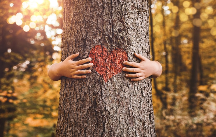 Cómo cuidar el medio ambiente: acciones y nuevas profesiones