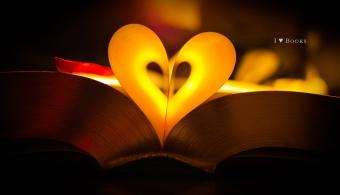 El 29,3% de los españoles es aficionado a la lectura