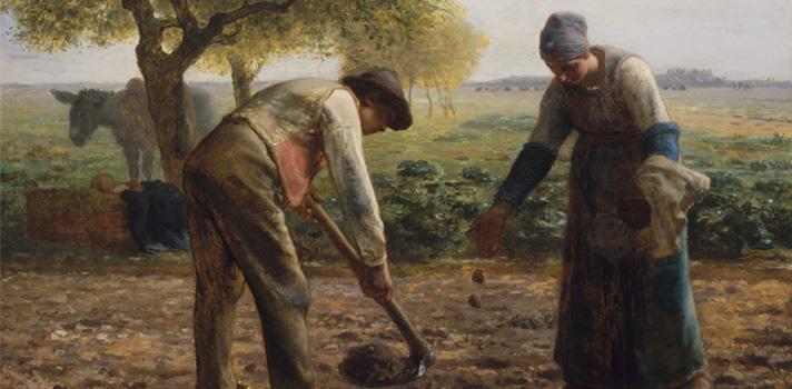 Arte do Dia: Plantadores de Batatas de Jean François Millet