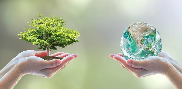 Cada 5 de junio se celebra a nivel global el Día Mundial del Medio Ambiente.