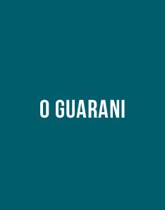 Livro grátis - O Guarani, José de Alencar
