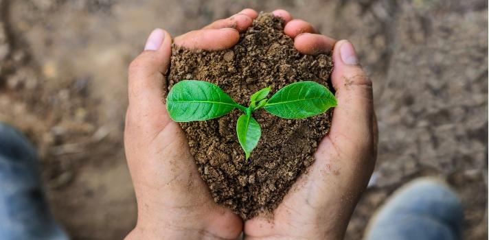 Como cada 5 de junio, hoy se celebra el Día Mundial del Medioambiente