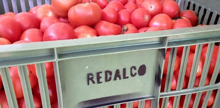 Redalco salva de ser desechados unos 3000 kilos de frutas y verduras por semana