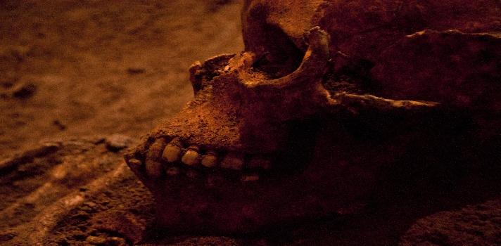 """Hallan en Etiopía nuevo ancestro de la especie humana: """"Australopithecus deyiremeda"""""""