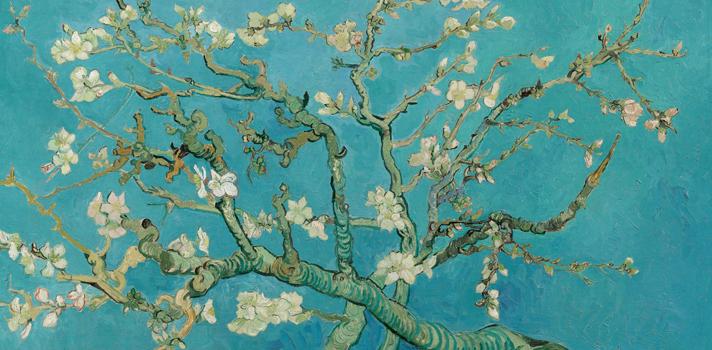 Arte do Dia: Amendoeira em Flor de Van Gogh