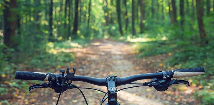 Hoy se celebra el Día Mundial de la Bicicleta