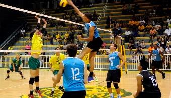 LAI: sólido inicio de los Pitirres y las Cocodrilas en el voleibol universitario