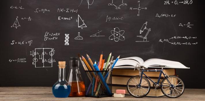 La brecha de género se hace evidente en Matemáticas y Ciencias.