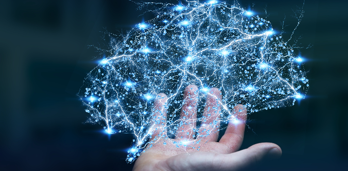 12 curiosidades sobre el cerebro según distintas universidades del mundo