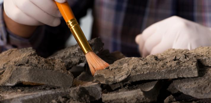 El gran número de minas abiertas en Perú hace que Geología sea una de las carreras con una ocupación laboral más elevada
