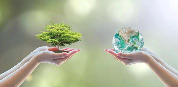 5 cursos clave para la supervivencia del planeta