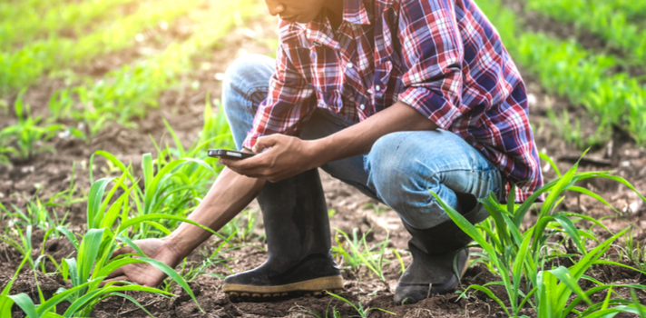 El futuro de la producción alimentaria concentra diversos tipos de investigaciones del ámbito de la Agronomía