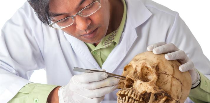 8 razones para estudiar Antropología