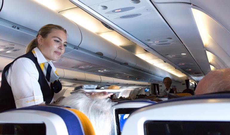 El auxiliar de vuelo en 6 preguntas con respuesta