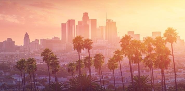 Bolsa de mestrado em empreendedorismo social na Califórnia