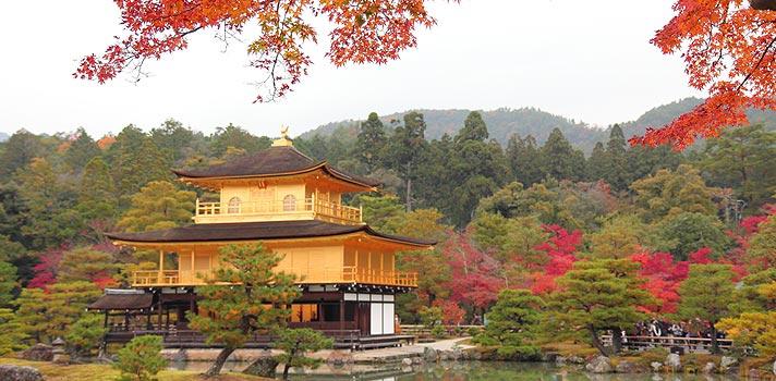 Japão tem bolsas de estudo para professores do ensino básico